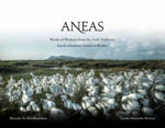 Picture of Aneas