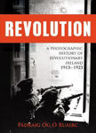 Picture of Revolution: A Photographic History of Revolutionary Ireland 1913-1923