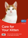 Picture of Care for Your Kitten