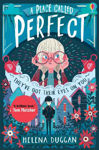 Picture of A Place Called Perfect: A Tom Fletcher Book Club 2017 title