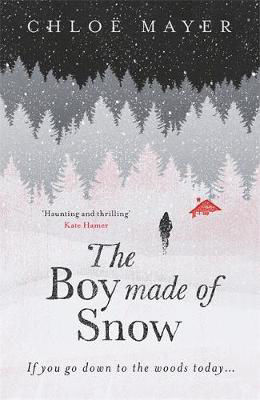 Picture of Boy Made of Snow