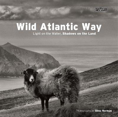 Picture of Wild Atlantic Way: Light on The Water, Shadows on the Land