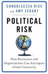 Picture of Political Risk: How Businesses and Organizations Can Anticipate Global Insecurity