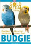 Picture of Budgie