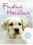 Picture of Finding Harmony