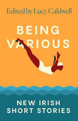 Picture of Being Various: New Irish Short Stories