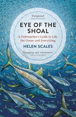 Picture of Eye of the Shoal: A Fishwatcher's Guide to Life, the Ocean and Everything