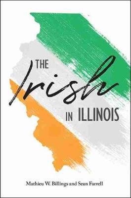 Picture of The Irish in Illinois
