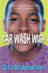 Picture of Car Wash Wish