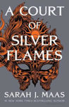 Picture of Court of Silver Flames