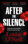 Picture of After the Silence: The An Irish Post Crime Novel of the Year
