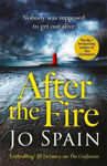 Picture of After the Fire: the latest Tom Reynolds mystery from the bestselling author of The Confession