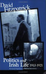 Picture of Politics and Irish Life 1913-21: Provincial Experiences of War and Revolution