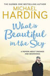 Picture of What is Beautiful in the Sky: A book about endings and beginnings