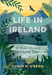 Picture of Life in Ireland: A Short History of a Long Time