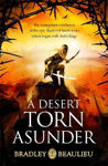 Picture of A Desert Torn Asunder