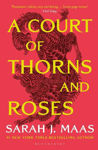 Picture of A Court of Thorns and Roses : The #1 bestselling series