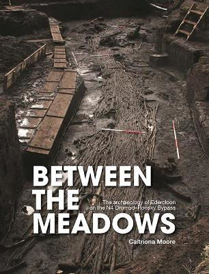 Picture of Between the Meadows: The archaeology of Edercloon on the N4 Dromod-Roosky Bypass