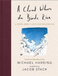 Picture of A Cloud Where the Birds Rise HB : A book about love and belonging